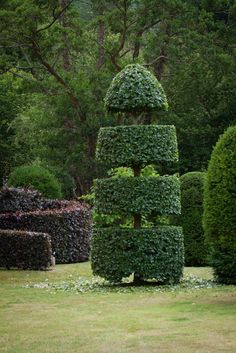 Arne's collection of topiary at Allt-y-bela is spectacular. Regular clipping is carried out by Head Gardener Steve Lannin. Photo by Britt Willoughby Dyer