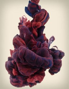 Slow motion ink being dropped in water- Alberto Seveso