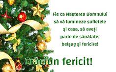 Xmas, Christmas, Noroc, Holidays, Motivation, Happy, Holidays Events, Holiday, Weihnachten