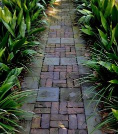 Mixture of bricks and pavers in pattern.