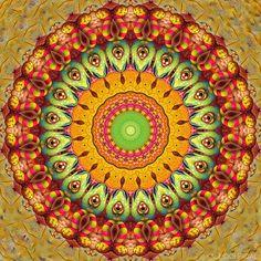 Green Rabbit  #kaleidofficial  #kaleidoscope #kaleidoscopic  #mandala #mandalaart #mandalalove #symmetricart #zentangle #zentangles #fractal #fractalart  #trippy #trippyart #psychedelic #psychedelicart  #digitaldrawing  #drawing #digitalart #visualdesign #visualart  #artwork #artgallery #pattern #modernart #graphics #mirrorlab #art_sanity #thegraphicspr0ject  #fa_hypnotic #dailyart