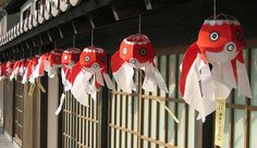 Yanai #japan #yamaguchi #yanai I still have my fish hanging in my house from when we went to the Yanai festival!
