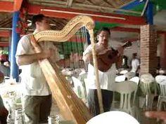 hermanos elvira de mandinga veracruz (+playlist)