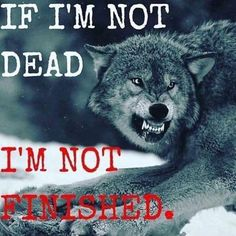 Save Gray Wolf, buy quality products and provide wolf sanctuary!🐺Check out get awesome designs & products to express your LOVE to - Wolf Qoutes, Lone Wolf Quotes, True Quotes, Motivational Quotes, Inspirational Quotes, Photo Facebook, Wolf Love, Wolves In Love, Warrior Quotes