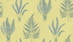 Woodland Fern (DAPGWO101) - Sanderson Wallpapers - A delicate, intricate pen and ink drawing of 3 different fern species.  Available in 5 colourways – shown in the etched cream on fresh light olive green. Please ask for sample for true colour match.