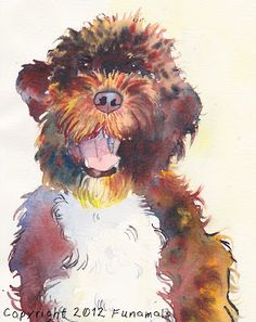 President Barack Obama's First Dog Bo in watercolor by Funamals :)