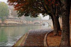 Paysage de brume automnale sur les quais de Seine - en arrière plan : le Pont Neuf, Ile de la Cité, Paris.