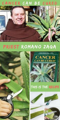 Aloe Vera - Cancer Can Be Cured! THIS IS THE REAL RECIPE!! Priest Romano Zaga