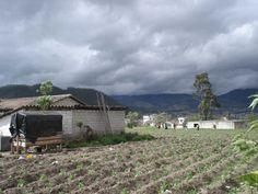 Farmland of Otavalo