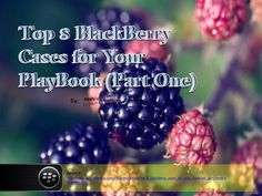 top-8-blackberry-cases-for-your-playbook-part-one by _CashforBerrys via Slideshare