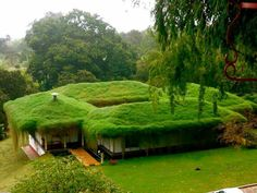Awesome green roof houses