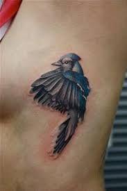 in flight is also beautiful Tattoo Drawings, Body Art Tattoos, Tatoos, Bird Tattoos, Back Tattoo, I Tattoo, Blue Jay Tattoo, Stylish Tattoo, Sister Tattoos
