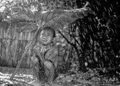 Herman Damar - chuva
