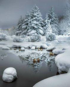 Classic winter scene