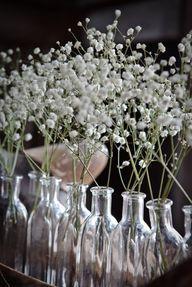 Milk bottles with baby's breath flowers.
