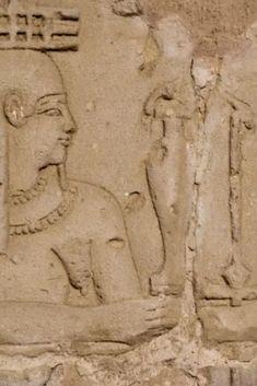 Ancient Egyptian Medicine, History Books, Historia, History Activities