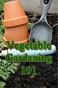 EXCELLENT INFORMATION: The Basics of Planning Your Vegetable Garden  - I want to plant one this year - only have room for a small one.