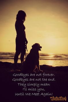 Goodbyes are not forever. Goodbyes are not the end. They simply mean I'll miss you, until we meet again!