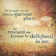 He rescued me because he delighted in me.  Psalm 18:19 #ScriptureSunday #davisny