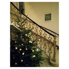 Instagram Photo by · Arianna Comi · (@ariel_comi)   WEBSTAGRAM Vienna, Ariel, Austria, Stairs, Instagram, Decor, Stairway, Decoration, Staircases
