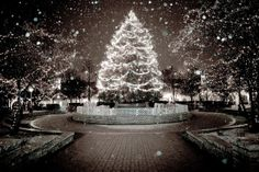 Christmas in Chicago by Radiance Of Light . com (GT007), via Flickr
