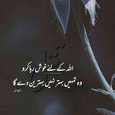 Sufi Quotes, Poetry Quotes In Urdu, All Quotes, Urdu Quotes, Islamic Quotes, Qoutes, Dulhan Dress, Quran Pak, Cute Cat Wallpaper