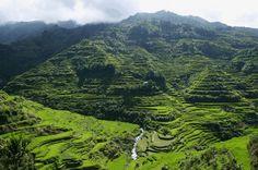 Banaue rice terraces, Luzon, Philippines.