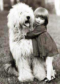 Old English Sheepdog hug. Fluffiness!!! I just wish every animal had love like this.