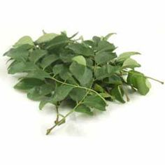 Curry Leaves/Fresh