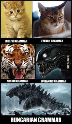 A magyar nyelv gyönyörei
