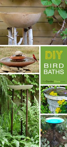 7 DIY Bird Baths • Easy projects!