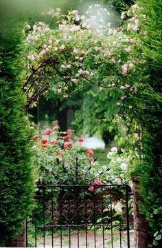 janetmillslove:      The Gilded Mirror moment love