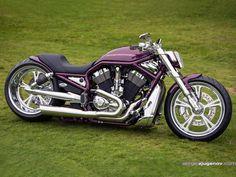 '02 Harley-Davidson VRSCA V-Rod   Fredy.ee