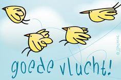 """Gratis e-card: """"Goede+vlucht!"""""""