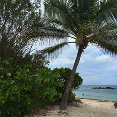 Visit Fort Zachary State Park Beach in Key West, one of 10 places to see in the beautiful Florida Keys.