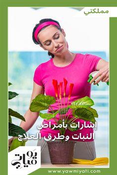 تتعرّض النباتات التي نزرعها في المنزل للأمراض أو تغزوها أنواع من الحشرات، وعلينا حمايتها عبر عناية خاصة بكل حالة على حدة.