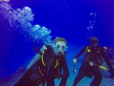 A M A Z I N G.. 3 dives on the Great Barrier Reef  #bucketlist #diving #greatbarrierreef #gbr #Australia #cairns #scubadiving #padiopenwater #fish #amazing #coral by tasharoberts29 http://ift.tt/1UokkV2