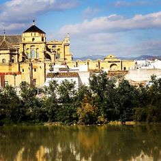 Spanish reflections #spain #cordoba #andalucia #travel #daytrip #sunshine #tefl #auxiliar #espana #europe #liveinspain #expat #summer