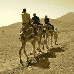 Top 10 seværdigheder i Marrakech - TripAdvisor