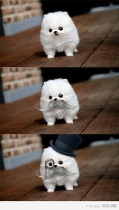 Why, I almost didn't recognize you in that clever disguise!
