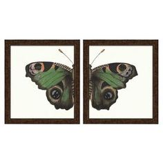 "A detailed butterfly depicted across two framed prints.  Product: 2 Piece framed print setConstruction Material: Archival print and woodColor: Brown frameFeatures: Made in the USADimensions: Framed: 16"" H x 15"" W each Unframed: 14"" H x 13"" W each"