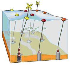 Point absorber wave energy farm