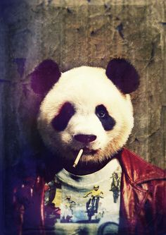 Panda Durden Canvas Print by rubbishmonkey Le Dab, Arte Dope, Panda Wallpapers, Panda Love, Tier Fotos, Cool Art, Street Art, Illustration Art, Cartoon
