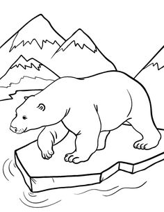 Printable polar bear coloring page. Free PDF download at http://coloringcafe.com/coloring-pages/polar-bear/