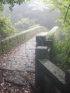 Quaint stone bridge Something mystical about stone bridges.