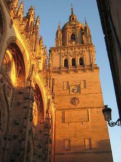 Torre Leronimus, Salamanca España