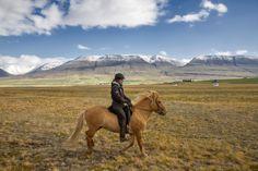 Horseback Riding In Iceland.
