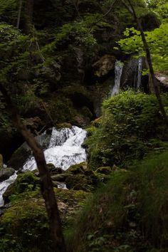 Eine gemütliche Wanderung zum beeindruckenden Trefflingfall! Water, Travel, Outdoor, Waterfall, Road Trip Destinations, Destinations, Fall, Gripe Water, Outdoors