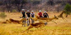 Ride a bike through awesome Zambia with Cycle for Plan - Africa, Zambia, Wildlife, Safari, Biking