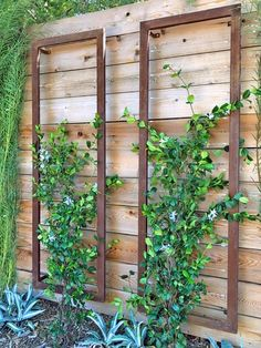 The INA WALL TRELLIS SR from Terra Trellis. A colorful modern trellis, perfect for vertical gardens, patios, wall gardens, small garden spaces. Wall Trellis, Garden Trellis, Metal Trellis, Diy Trellis, Trellis On Fence, Fence For Garden, Verticle Garden Wall, Deck Trellis Ideas, Small Garden Wall Ideas